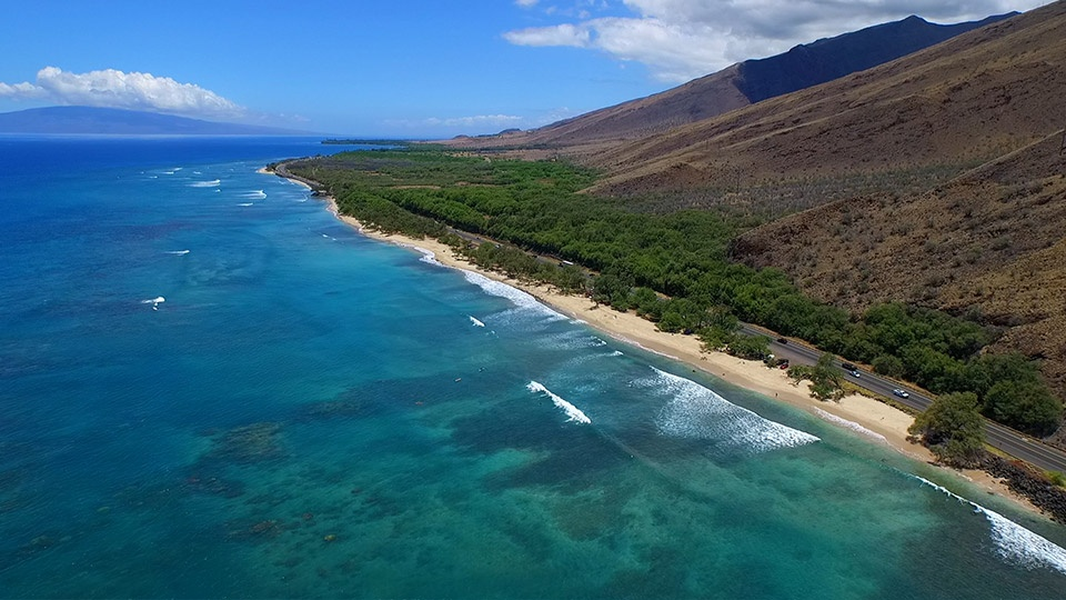 Maui Best Coral Gardens Snorkeling