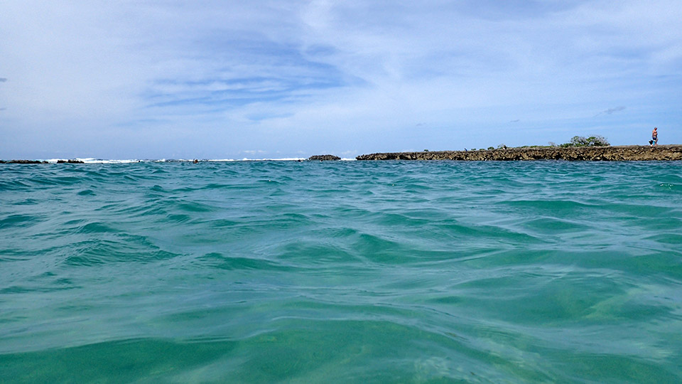 Snorkeling at Kuilima Cove