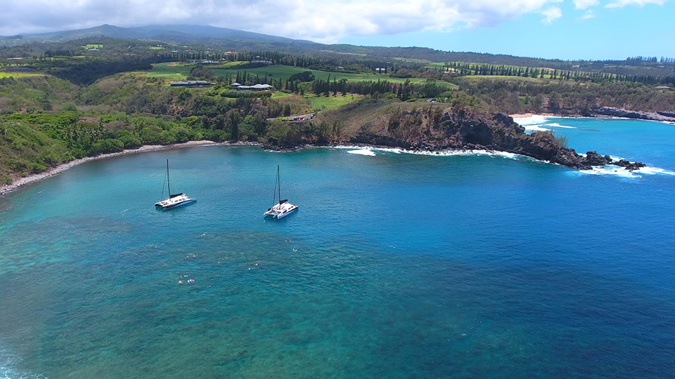 Honolua Bay Snorkeling Trip