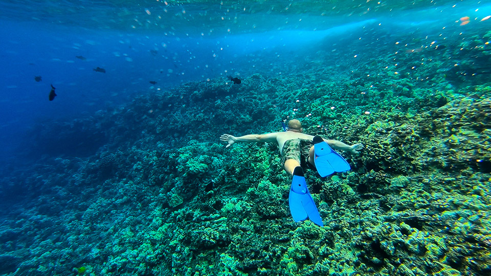 Snorkeling at Molokini Crater
