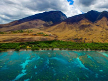 Olowalu and Coral Gardens