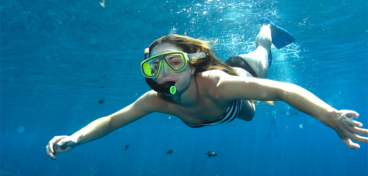 girl snorkeling in blue maui ocean with fish and turtles