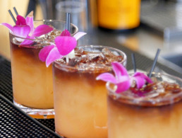 tropical drinks garnished with flowers