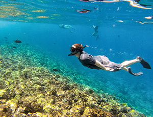 A snorkeler over the Molokini reef swimming with tropical fish.