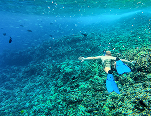 Snorkeler swimming with sealife on the reef at Molokini Crater, Maui, Hawaii.