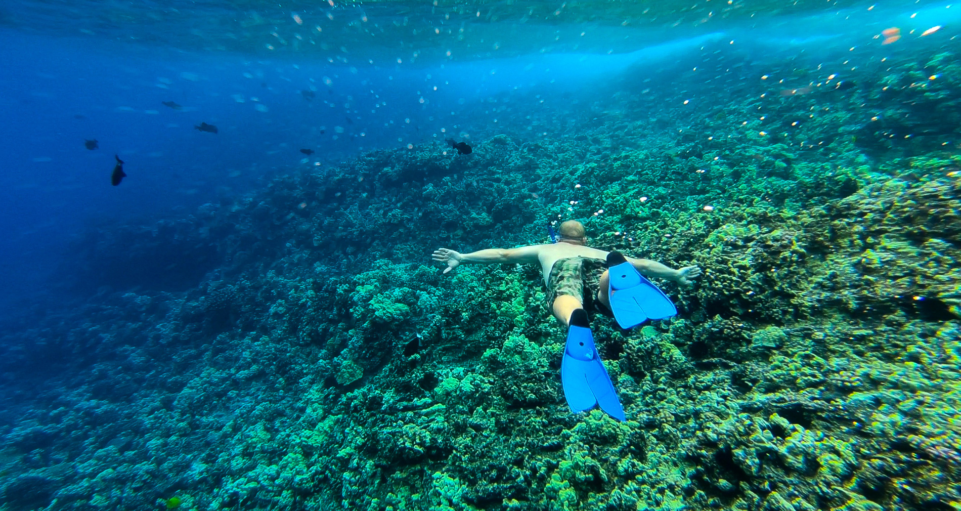Maui Hawaii Snorkeling Safety Tips
