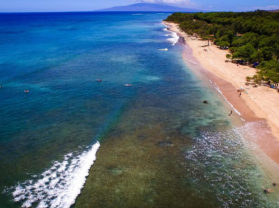 Best Coral Gardens Adventure Snorkel Tour Maui